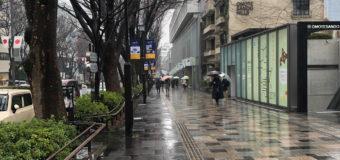 久しぶりの雨!